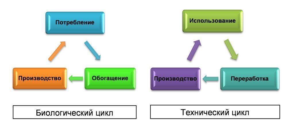Графическая модель циркулярной экономики